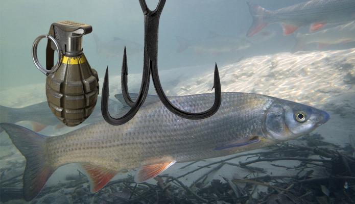 nedozovljen nacin ribolova - krivolov
